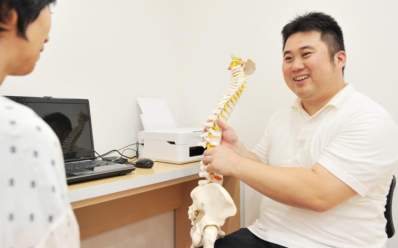 骨盤と背骨、骨格と姿勢